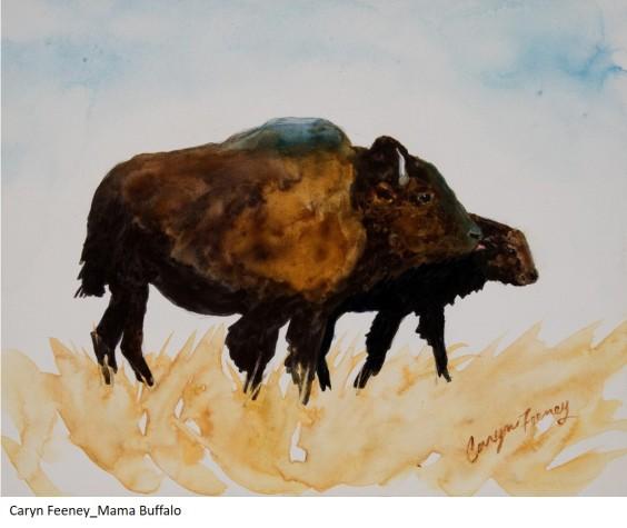 Caryn Feeney_Mama Buffalo
