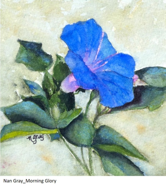 Nan Gray_Morning Glory